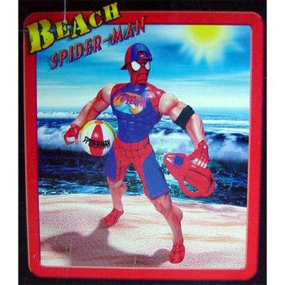 beachspiderman.jpg.jpg