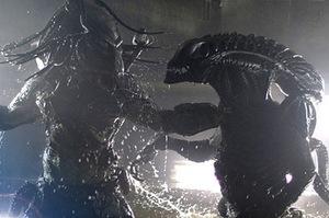 alien-predator-battle.jpg