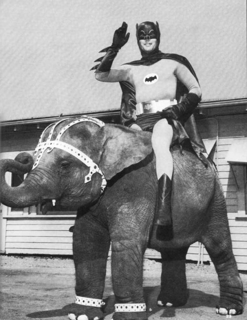 batman_elepahnt.jpg