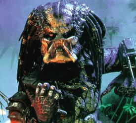 predator twin.jpg