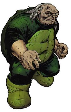 112072-132330-turtle_large.jpg