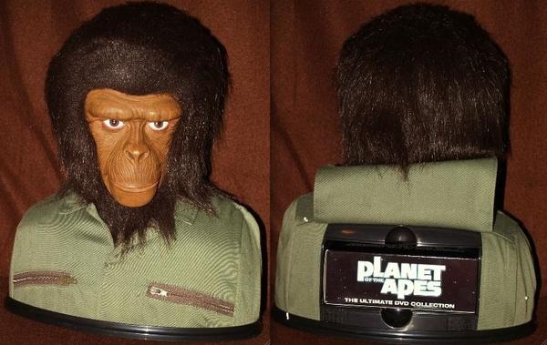 chimpan a to chimpan z.jpg