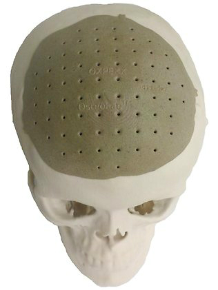 3d skull.jpg