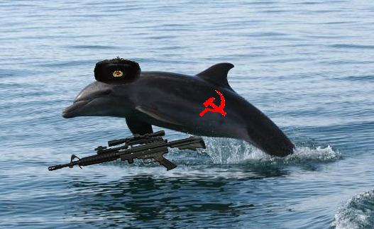 Ukrainian Dolphin.jpg