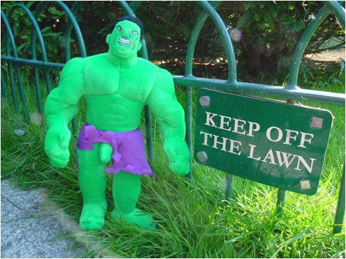 hulk-wang.jpg