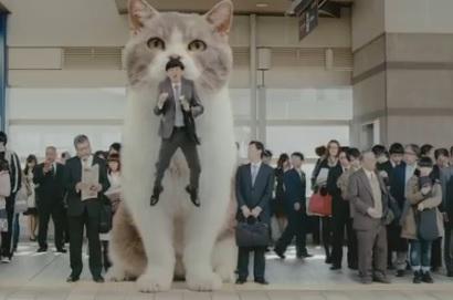 kittycatgum.jpg
