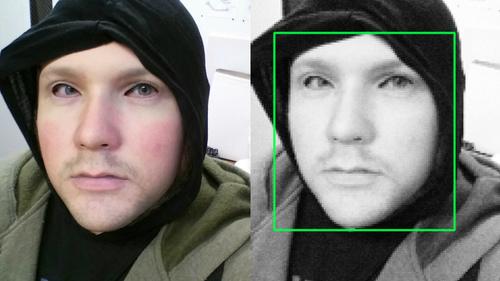 falseface.jpg