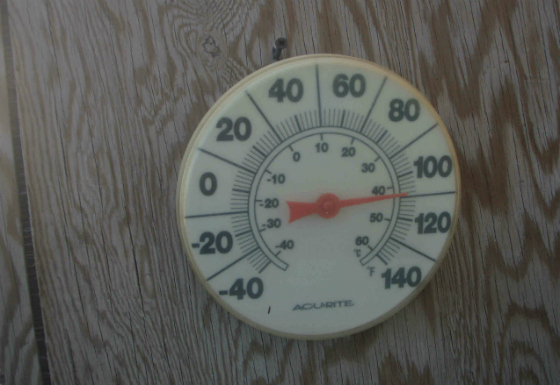martha_thermometer.jpg