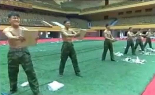 NK_martial_arts.jpg