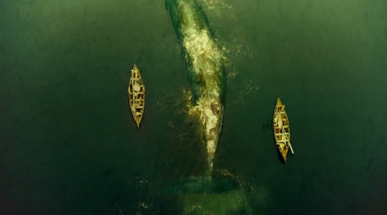 thorevilwhale.jpg