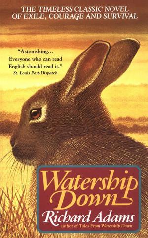 watershipdown_book.jpg