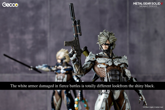 raiden_W_caption_gecco_02.jpg
