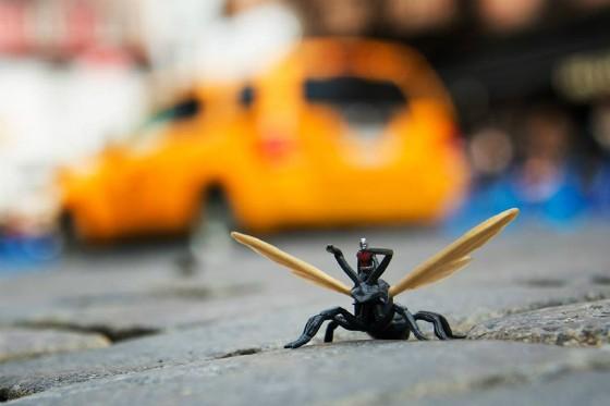 antman_toy.jpg