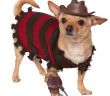 Rubies Freddy Krueger Dog Costume hi res